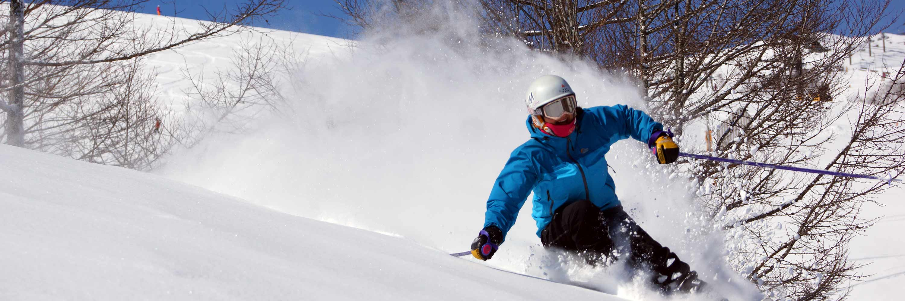 hakuba ski lessons and hakuba snowboard lessons