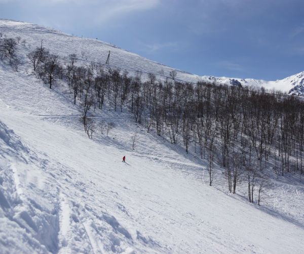 Happo One, Hakuba
